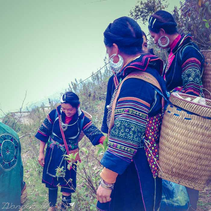 Hmong ladies accompanying us on our walk.